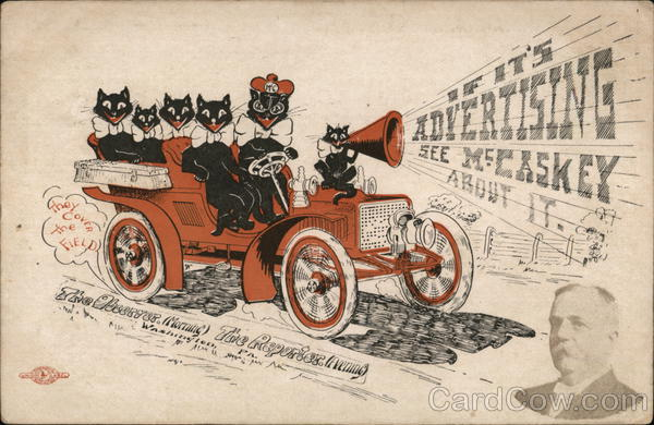 Observer Publishing Company - Black Cats in Car Washington Pennsylvania