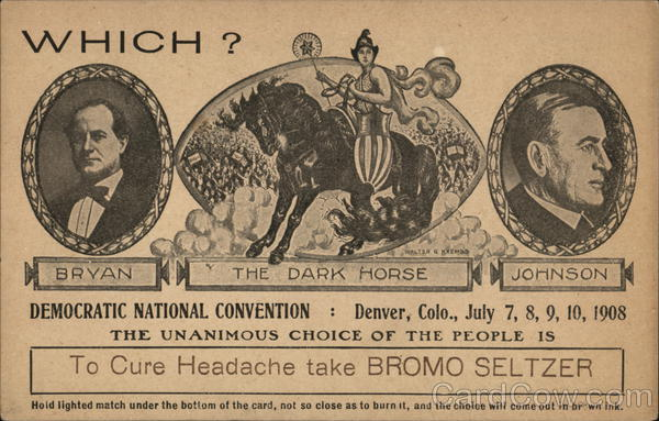 Bromo Seltzer - Democratic National Convention Denver Colorado