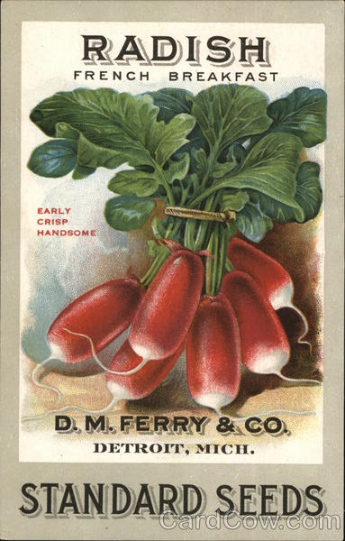 D.M. Ferry & Company Seeds Detroit Michigan Advertising