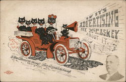 Observer Publishing Company - Black Cats in Car