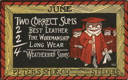 Peters Shoe Company Weatherbird Shoes