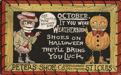Peters Shoe Co. Weatherbird Shoes