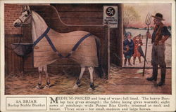 5A Horse Blankets, Wm Ayres & Sons