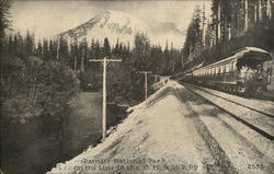 C. M. & St. Paul Railway - Rainier National Park