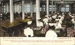 Beech-Nut Packing Company