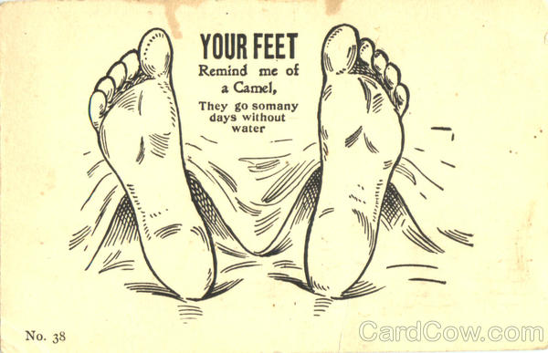 Your Feet Remind me of a Camel Comic, Funny