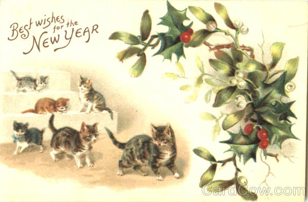 Best Wishes For The New Year Cats