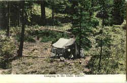 Camping In The Idaho Timber