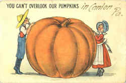 You Can't Overlook Our Pumpkins