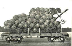 Carload of Grapes Postcard