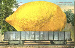 I'M Sending You A Lemon Postcard