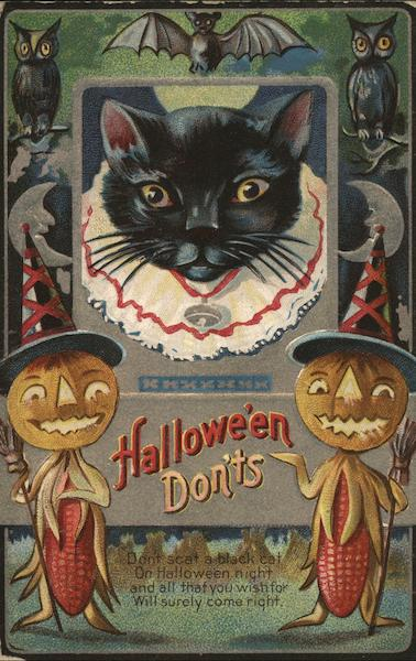 Halloween don'ts - black cat in a collar with two jack o lanterns, oils, moons and bats