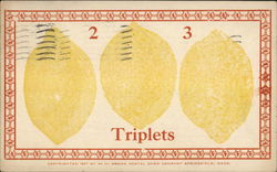 Three Lemons 2 - 3 - - Triplets