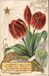 May Birthday greeting - tulips, star, emerald