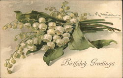 Birthday Greetings - flowers Postcard