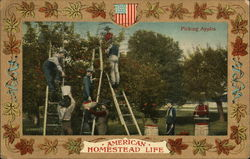 Picking Apples - American homestead life
