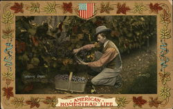 """Gathering Grapes"" American homestead life"