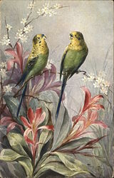 Two Parakeets Perched Atop Orange Lilies