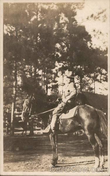 Soldier Posing on a Horse People in Uniform