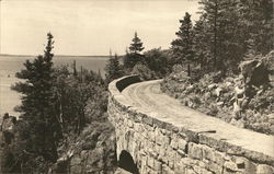 Sea Cliff Drive Postcard