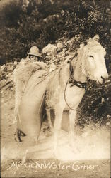 Mexican Water Carrier - Donkey Postcard