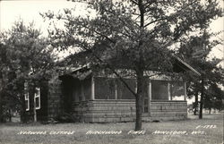 Norwood Cottage - Birchwood Pines, Minocqua, Wis