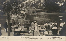 Bear Dens - New York Zoological Park