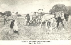 Pioneers in Canada Harvesting Wheat