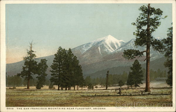 The San Francisco Mountains Flagstaff Arizona