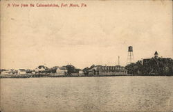 A View From the Caloosahatchee