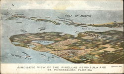Bird's Eye View of the Pinellas Peninsula