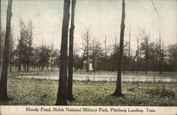 Bloody Pond, Shiloh National Military Park
