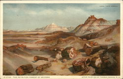 The Petrified Forest of Arizona