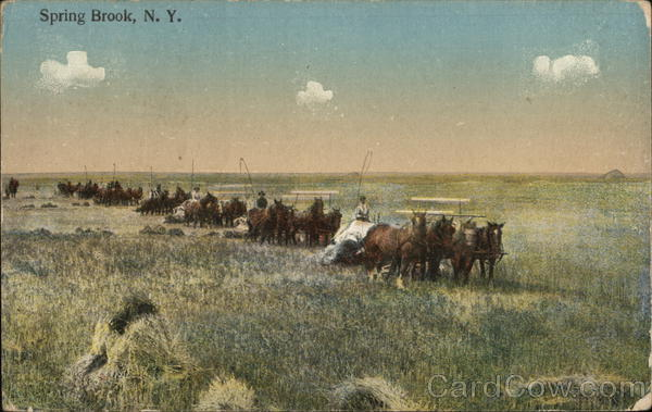 Teams of horses pulling wagons across a field Spring Brook New York