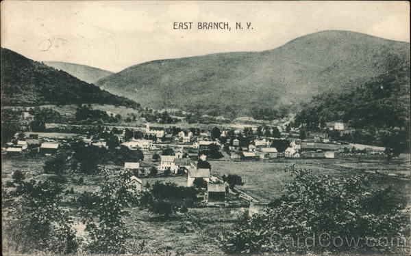 A view of East Branch, N.Y. New York