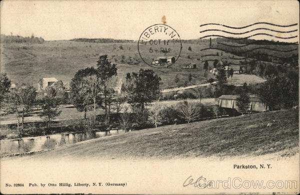 View of stream, trees, covered bridge and several houses Parkston New York