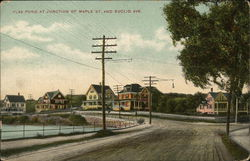 Flax Pond, Junction of Maple St. and Euclid Ave.
