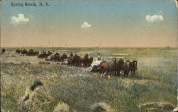 Teams of horses pulling wagons across a field