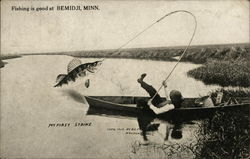 Man in boat pulling in a huge fish