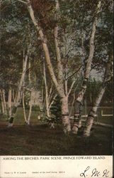 Among the Birches, Park Scene