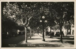 Calle 51