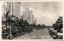 Biscayne boulevard on a sunny Winter day