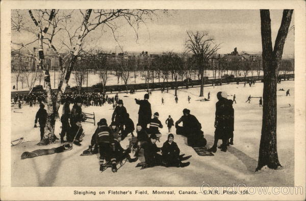Sleighing on Fletcher's Field Montreal Canada Quebec