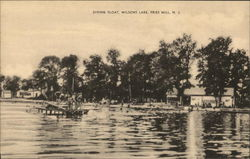 Diving Float, Wilsons Lake, Fries Mill