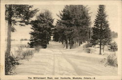 The Williamsport Road, Near Huntsville