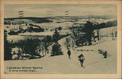 Winter Scene With Cross-Country Skiiers