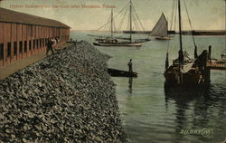 Oyster Industry on the Gulf