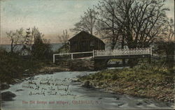 The Old Bridge and Willows