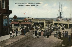 "The Arrival of the Steamer ""Cabrillo"""