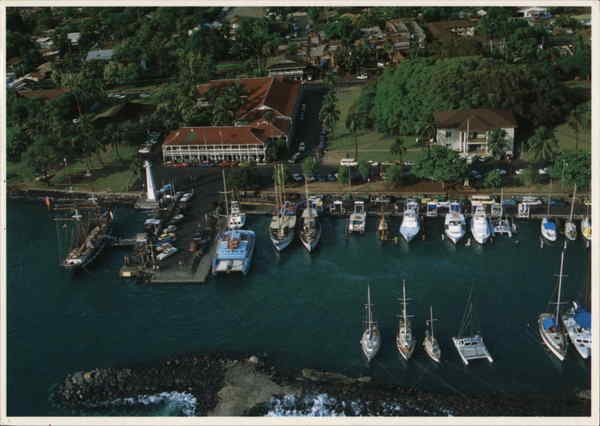 Aerial View of Lahaina Harbor Hawaii